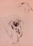 Vulture sketch Stock Image