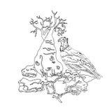 Vulture Socotra island on stone , bottle tree, Royalty Free Stock Images