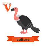 Vulture. V letter. Cute children animal alphabet in vector. Funn Royalty Free Stock Photo