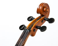 Vulture of violin with strings Stock Photo