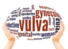 Vulva word cloud hand sphere concept royalty free stock photo