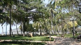Vung Tau, Vietnam - January 26, 2018: Vung Tau park beside the beautiful beach. Vung Tau, Vietnam - January 26, 2018: Vung Tau park beside the beautiful beach stock footage