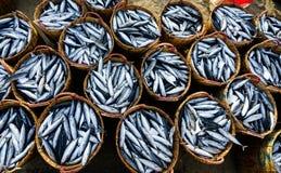 VUNG TAU, VIETNAM - 3. JULI 2016: Frische Fische angehäuft oben in den Bambuskörben an langem Fischereihafen Hai Stockbild
