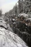 Vuoksa flod-säng finland fotografering för bildbyråer
