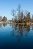 Vuoksi Fluss-Frühlingslandschaft stockfotos
