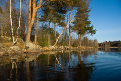 Vuoksi river spring landscape. Karelian isthmus, Russia Stock Images