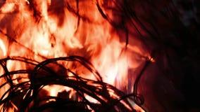Vurendraad in brand stock videobeelden