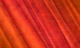 Vurig rood fluweel Stock Afbeelding