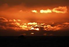 Vurige die Zon door Gedetailleerde Wolken tijdens Zonsondergang wordt omringd Royalty-vrije Stock Afbeelding