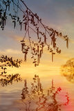 Vurige zonsondergang op het meer Stock Afbeelding