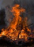 Vuur Stock Afbeeldingen