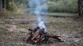 Vuur in de avond stock videobeelden