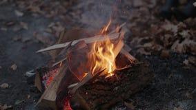 Vuur in de herfst door het meer stock video