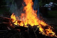 Brandend vuur in de tuin u stockvideo ludovikus