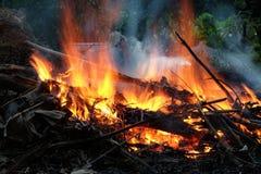 Vuur in de tuin Royalty-vrije Stock Foto's