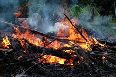 Vuur in de tuin Royalty-vrije Stock Afbeelding
