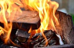 Vuur in het bos Stock Afbeelding