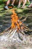 Vuur in het bos royalty-vrije stock afbeeldingen