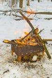 Vuur het branden in het bos Stock Afbeeldingen