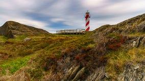 Vuurtoren bij Hart ` s Tevreden Newfoundland royalty-vrije stock foto