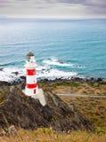 Vuurtoren bij Kaap Palliser, Nieuw Zeeland Royalty-vrije Stock Foto's