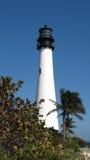 Vuurtoren de Zuid- van Florida Stock Foto's