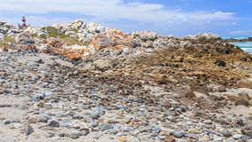 Vuurtoren (Kaap Agulhas 1848 in Zuid-Afrika) stock afbeeldingen