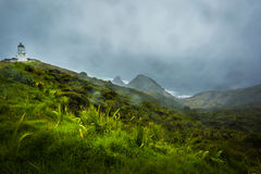 Vuurtoren in Kaap Reinga, Nieuw Zeeland royalty-vrije stock fotografie