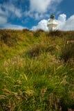 Vuurtoren, Nieuw Zeeland Stock Foto's