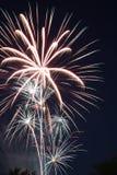 Vuurwerk 001 Stock Afbeelding