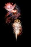 Vuurwerk. stock fotografie