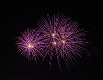 Vuurwerk Royalty-vrije Stock Afbeeldingen
