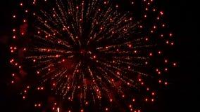 Vuurwerk 18 stock videobeelden