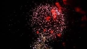 Vuurwerk stock footage