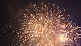 Vuurwerk stock videobeelden