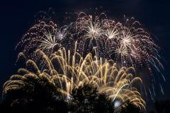 Vuurwerk bij nacht Stock Foto's