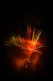 Vuurwerk dat op zwarte wordt geïsoleerd Royalty-vrije Stock Afbeelding