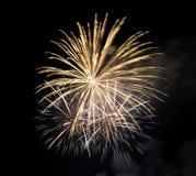 Vuurwerk in de donkere hemel Royalty-vrije Stock Fotografie