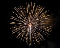 Vuurwerk in de donkere hemel Stock Afbeeldingen