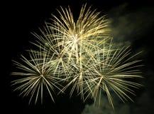 Vuurwerk in de donkere hemel Royalty-vrije Stock Afbeeldingen