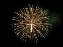 Vuurwerk in de donkere hemel Stock Foto