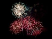 Vuurwerk in de donkere hemel Stock Afbeelding