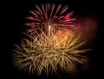 Vuurwerk in de donkere hemel Stock Foto's