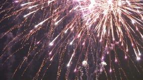 Vuurwerk in de hemel stock video