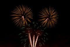 Vuurwerk in de nachthemel Stock Afbeeldingen