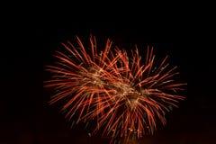 Vuurwerk in de nachthemel Royalty-vrije Stock Foto