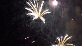 Vuurwerk in de nachthemel stock video