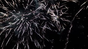 Vuurwerk die in diverse kleuren in de donkere nachthemel exploderen stock videobeelden