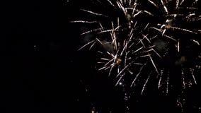 Vuurwerk die in diverse kleuren in de donkere nachthemel exploderen stock footage