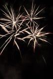 Vuurwerk-Fuegos artificiales Stock Afbeelding